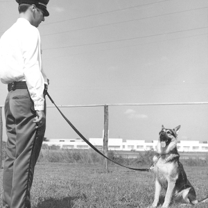 Archival photograph showing a UT Police officer with a canine dog